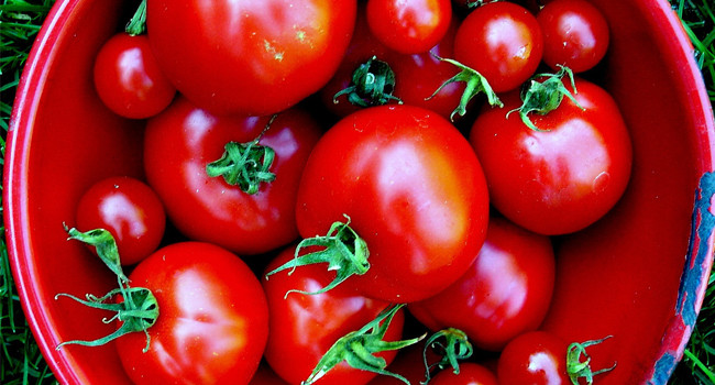 Lycopene Cartenoids Ranked Top Antioxidants