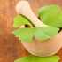 What is ginkgo biloba?